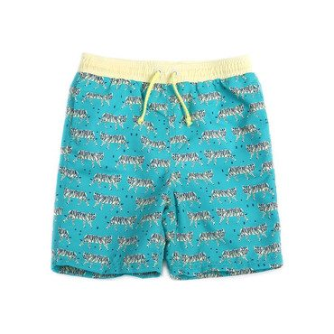 Drake Swim Short, Aqua