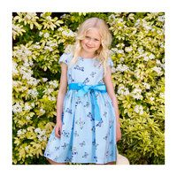 Cotton Butterfly Party Dress, Blue