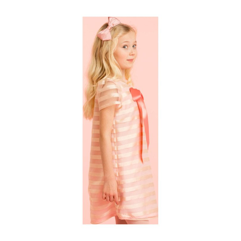 Striped Organza Shift Dress, Pale Pink