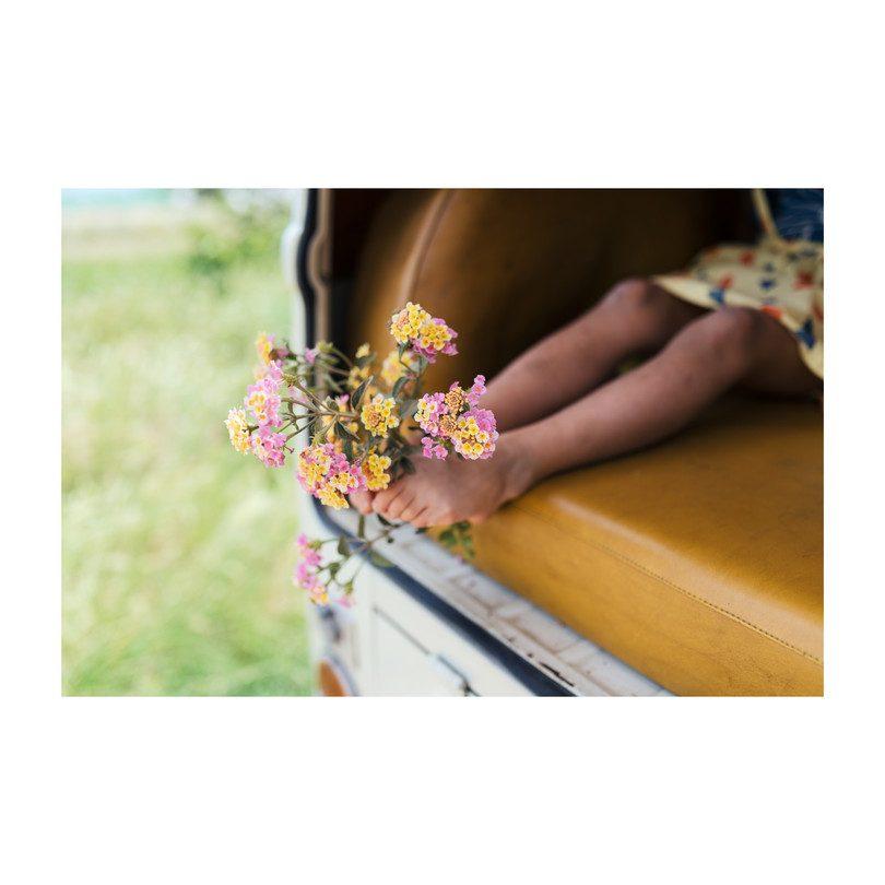 ad5f8d2a20f Pollen Braces Skirt