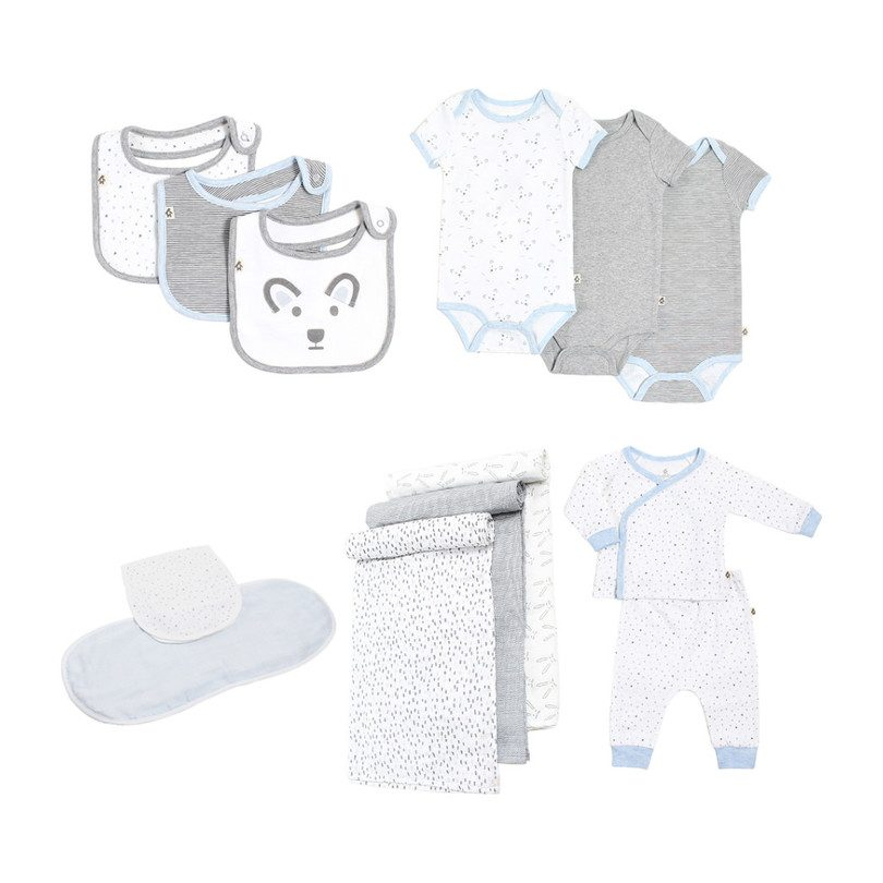 Dream Boys Newborn Needs Gift Bundle